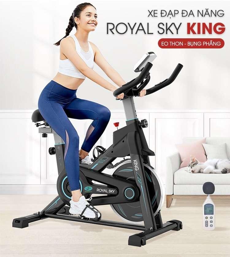 Xe đạp tâp đa năng Royal Sky King
